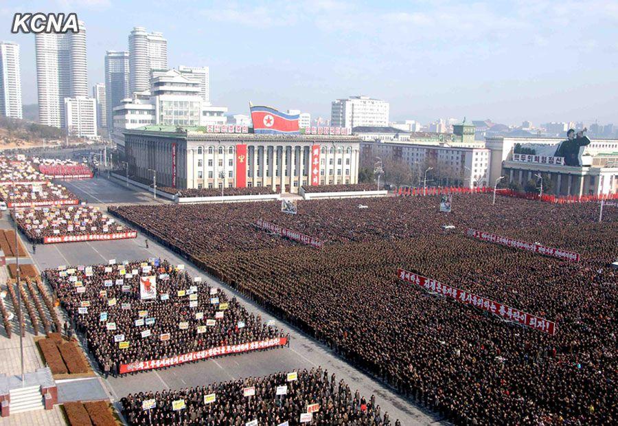 human rights racket demo 25 nov 14 pyongyang